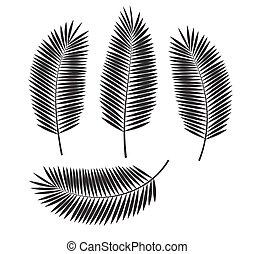 dłoń, wektor, liść, ilustracja