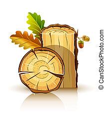 dřevěný, hmota, o, dub, s, zub, a, žaludy