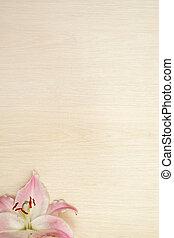dřevěný, lilie, grafické pozadí