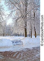 dřevěný, město, park lavice
