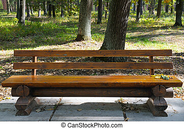 dřevěný, podzim, park lavice