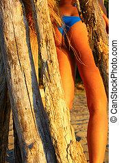 dřevo, bikini