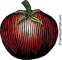 dřevoryt, rajče