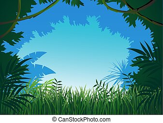 džungle, grafické pozadí