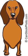 Dachshund cartoon dog icon