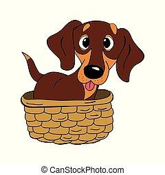 dachshund dog breed vintage vector illustration