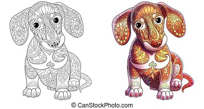 Dachshund dog coloring - Dachshund dog. Colorless and color...
