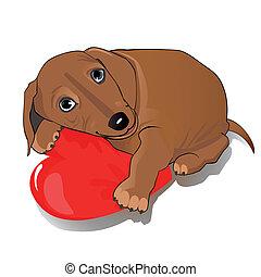 Dachshund dog heart - Dog with a big heart as a symbol of...