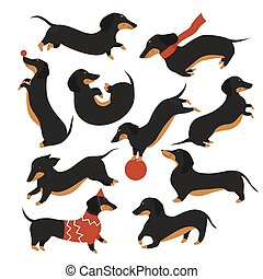 Dachshund dog playing isolated set, cartoon cute pet animal in various poses collection