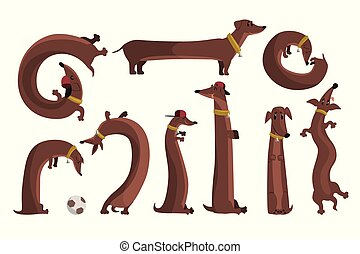 Dachshund dog set, cute funny long dog in different situations vector Illustrations