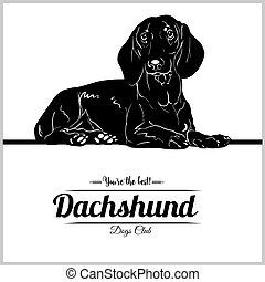 Dachshund Dog - vector illustration for t-shirt, logo and template badges