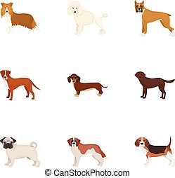 Dachshund, laika, poodle and other web icon in cartoon style. Boxer, rottweiler, bulldog, icons in set collection.