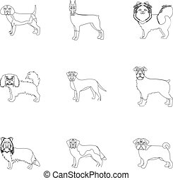 Dachshund, laika, poodle and other web icon in outline style. Boxer, rottweiler, bulldog, icons in set collection.