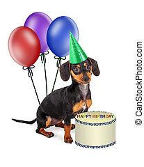 Dachshund Puppy Birthday Party