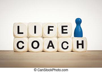 dado, vita, blu, allenatore, giocattolo, spelled, pegno, ...