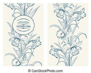 Daffodil flower.