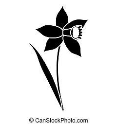 daffodil flower leaf bloom pictogram