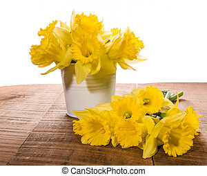 Daffodil flowers in a white can