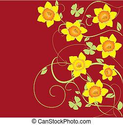 daffodil frame - vector dafodil frame