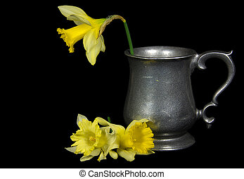 daffodil in vintage pitcher