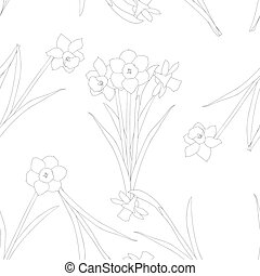 Daffodil - Narcissus on White Background