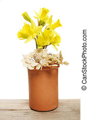 Daffodils and hydrangea flowers in a pot