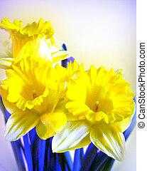 Daffodils blue yellow watercolor