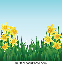 Spring background with daffodils and grass
