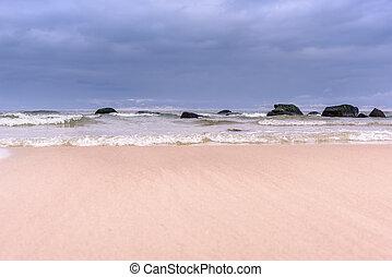 dag, hos, strand