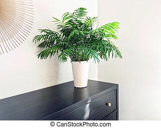 dagligstue, håndflade, plante, dekorer, sort, af træ, komode