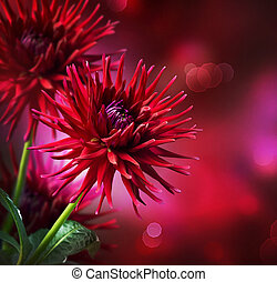 dahlia, automne, fleur, design.over, noir