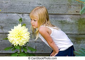 Dahlia Delight - Little girl check out a huge dahlia...
