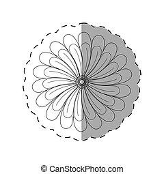 dahlia flower decoration cut line