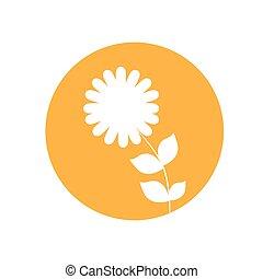 dahlia flower natural icon