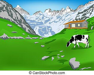 Dairy cow in alps - Dairy cow on a alps mountains green...