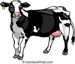 vector drawing of a dairy cow