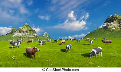 Dairy cows graze on alpine pasture - Farm landscape with a...