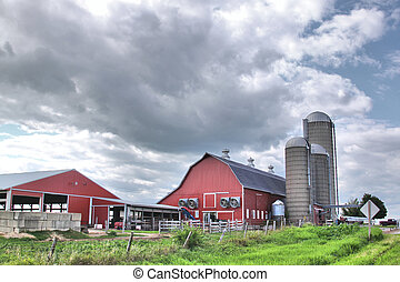 Dairy farm - A dairy farm against a cloudy sky