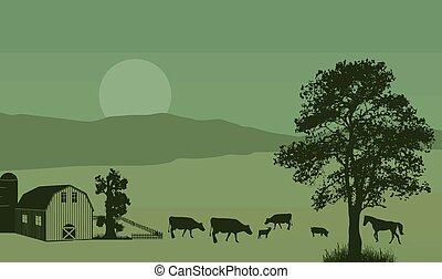 Dairy farm on beautiful place