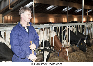 Dairy farmer in the foreground, looking sternly away from...