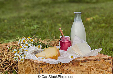 dairy products milk, cheese yogurt served at picnic table in a cheese farm caws in background