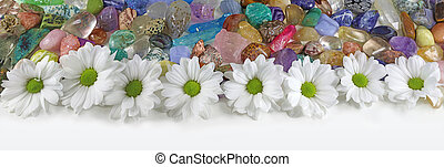 Daisies and Healing Crystals Banner