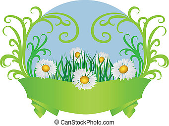 Daisies and ribbon - Summer floral card with daisies and...