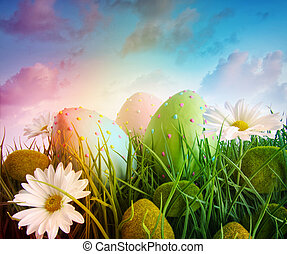 daisies, eggs, радуга, небо, цвет, трава, большой