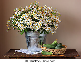 Daisies in a bucket and cucumbers. Still life with a bouquet