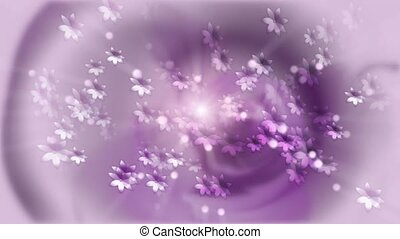 Daisies on purple
