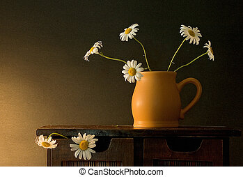 Daisies - Still life with daisies
