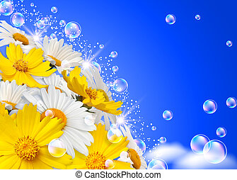 Daisies and bubbles