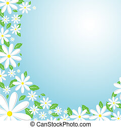 Daisy background - Daisy bordered background