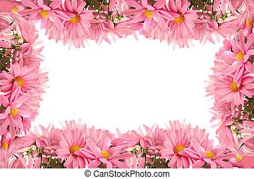 Daisy border or frame